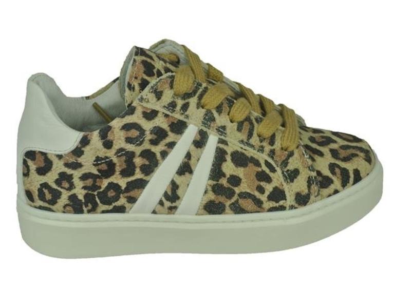 Giga Shoes G2033