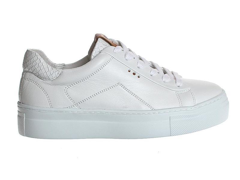 AQA Shoes A7192