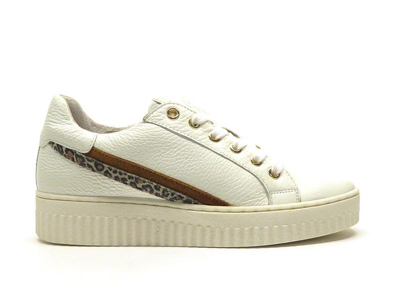 Shoecolate 8.10.02.055