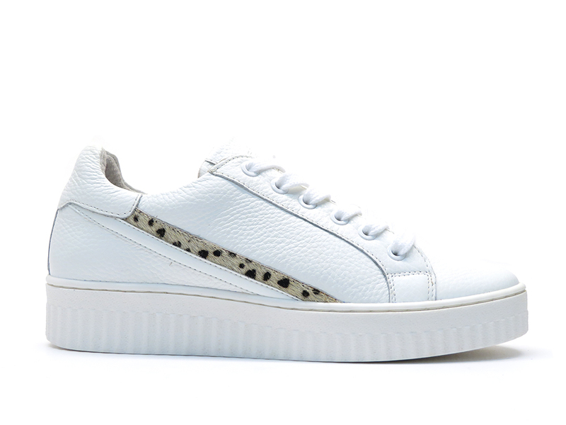 Shoecolate 8.10.02.051
